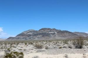 Eagle Adventure Tours - Muscle_Car_Tour_USA (19)