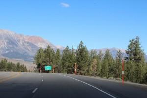 Eagle Adventure Tours - Muscle_Car_Tour_USA (32)