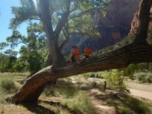 Eagle Adventure Tours - Familien_Urlaub_USA (38)