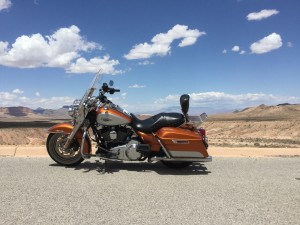 Eagle Adventure Tours - Harley Tour West Coast USA RT (41)