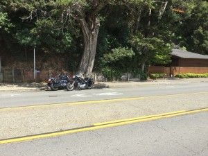Eagle Adventure Tours - Harley Tour West Coast USA RT (57)