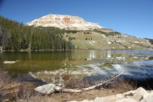 Eagle Adventure Tours - USA Reise Rocky Mountains Yellowstone National Park (25)