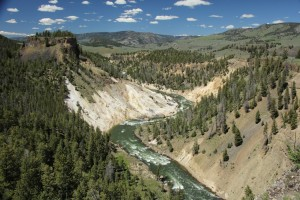 Eagle Adventure Tours - USA Reise Rocky Mountains Yellowstone National Park (27)