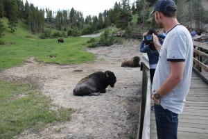 Eagle Adventure Tours - USA Reise Rocky Mountains Yellowstone National Park (32)
