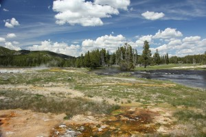Eagle Adventure Tours - USA Reise Rocky Mountains Yellowstone National Park (45)