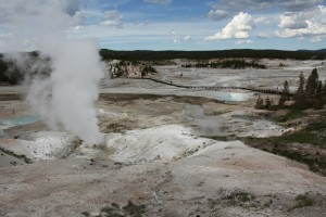 Eagle Adventure Tours - USA Reise Rocky Mountains Yellowstone National Park (51)