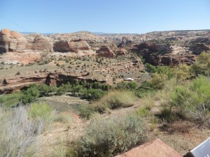 Eagle Adventure Tours - harley-tour-usa-canyon-explorer-68