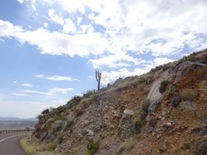 Eagle Adventure Tours - harley-tour-usa-west-coast-45