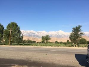 Eagle Adventure Tours - Muscle Car Tour USA West Coast (32)