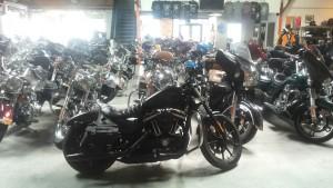 Eagle Adventure Tours - Harley Tour USA (47)
